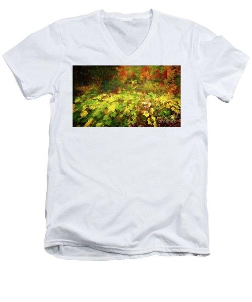 Autumn Watercolor Men's V-Neck T-Shirt