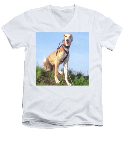 Ava-grace, Princess Of Arabia  #saluki Men's V-Neck T-Shirt by John Edwards