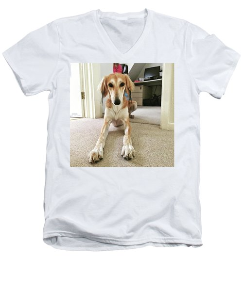 Ava On Her First Birthday #saluki Men's V-Neck T-Shirt