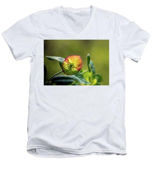 Awake Men's V-Neck T-Shirt