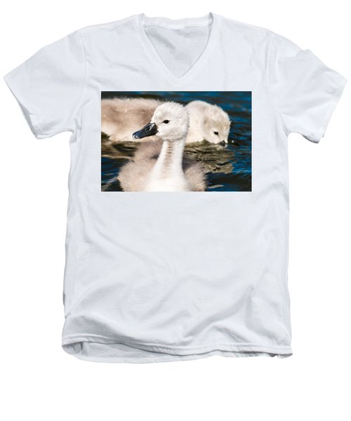 Baby Swan Close Up Men's V-Neck T-Shirt