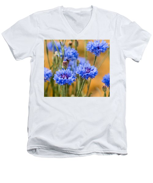 Bachelor Buttons In Blue Men's V-Neck T-Shirt