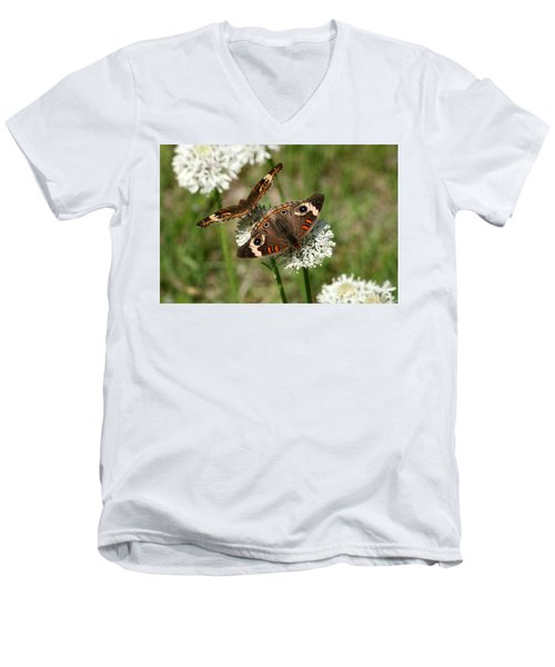 Back To Back Butterflies Men's V-Neck T-Shirt by Sheila Brown