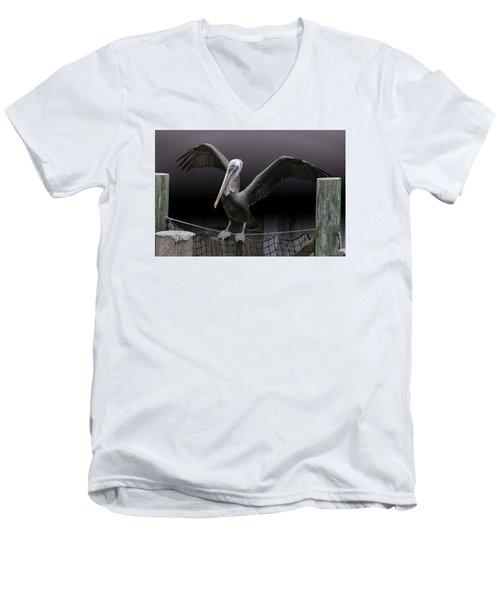 Balancing Act - Pelican Men's V-Neck T-Shirt