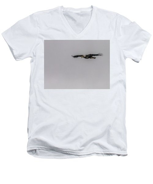 Bald Eagle Gliding Men's V-Neck T-Shirt