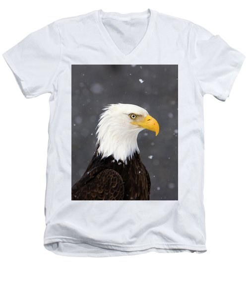 Bald Eagle Intensity Men's V-Neck T-Shirt