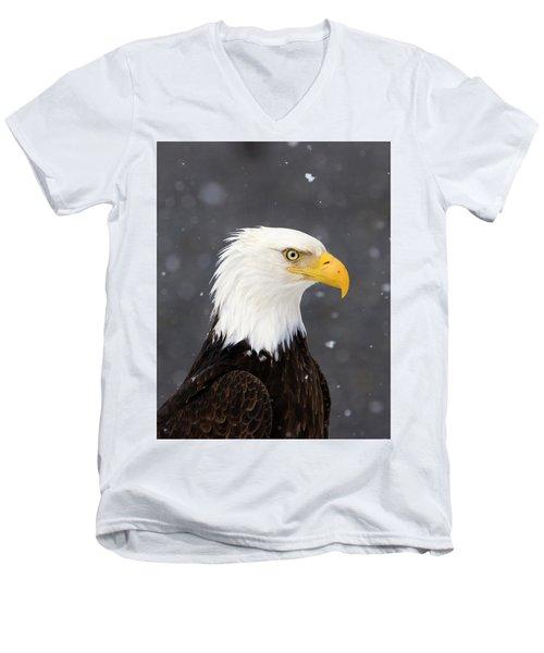 Bald Eagle Intensity Men's V-Neck T-Shirt