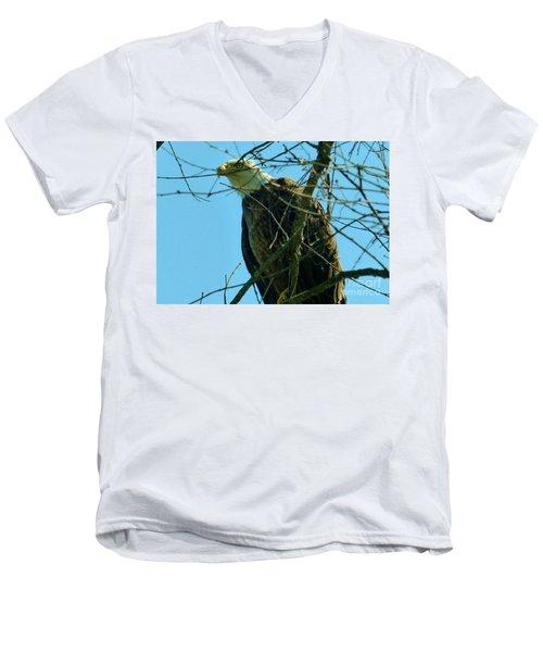 Bald Eagle Keeping Guard Men's V-Neck T-Shirt