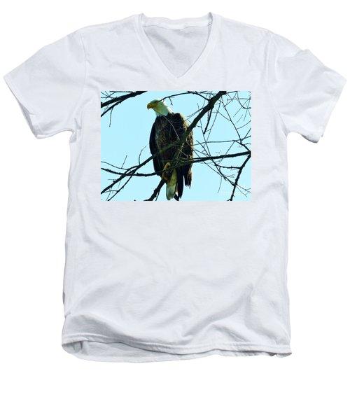 Bald Eagle Over The Root River Men's V-Neck T-Shirt