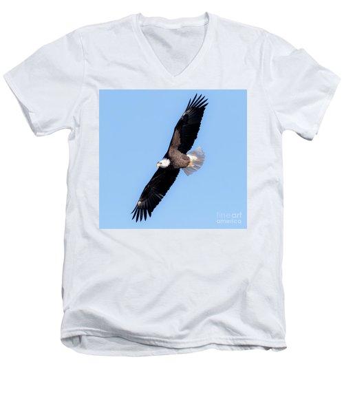 Bald Eagle Overhead  Men's V-Neck T-Shirt by Ricky L Jones