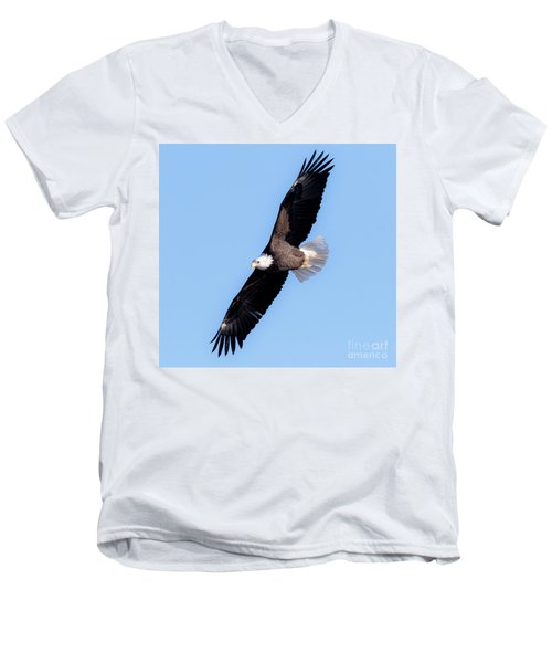 Bald Eagle Overhead  Men's V-Neck T-Shirt