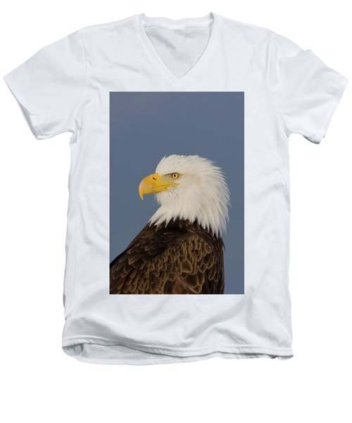 Bald Eagle Portrait Men's V-Neck T-Shirt