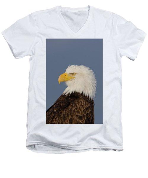 Bald Eagle Portrait Men's V-Neck T-Shirt