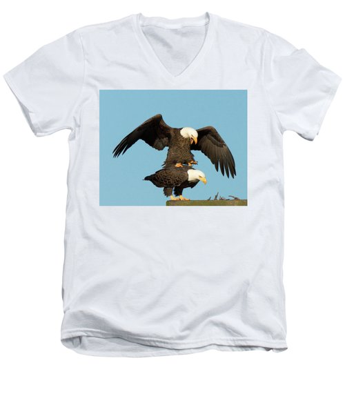 Bald Eagles Mating Men's V-Neck T-Shirt