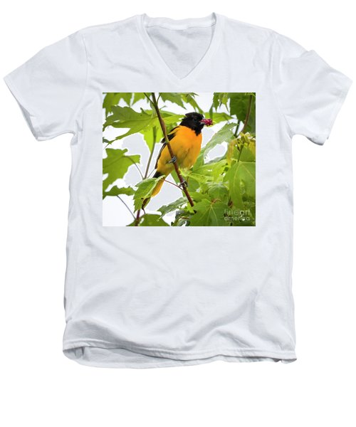 Men's V-Neck T-Shirt featuring the photograph Baltimore Oriole With Raspberry  by Ricky L Jones