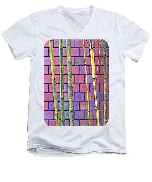 Bamboo And Brick Men's V-Neck T-Shirt
