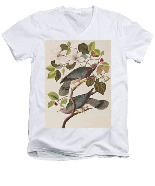 Band-tailed Pigeon  Men's V-Neck T-Shirt by John James Audubon