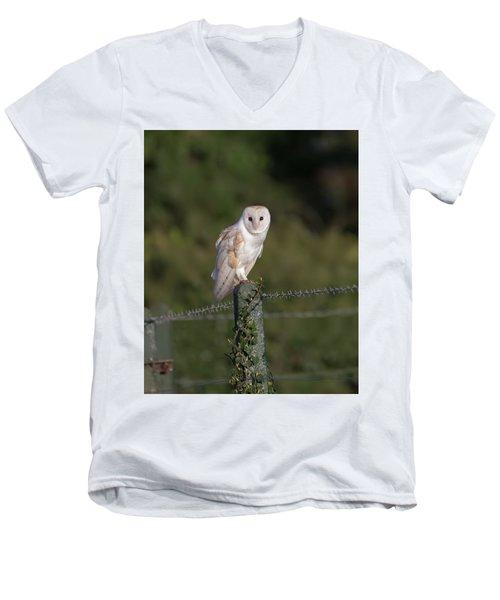 Barn Owl On Ivy Post Men's V-Neck T-Shirt