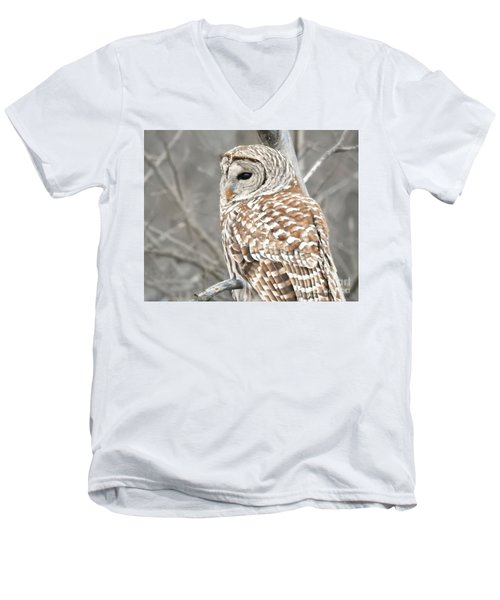 Barred Owl Close-up Men's V-Neck T-Shirt by Kathy M Krause