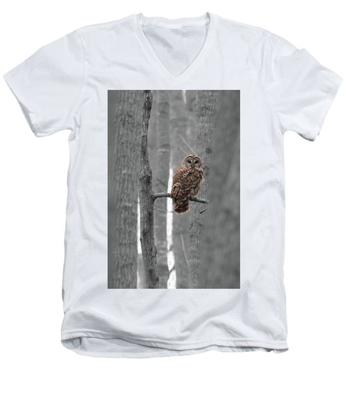 Barred Owl In Winter Woods #1 Men's V-Neck T-Shirt