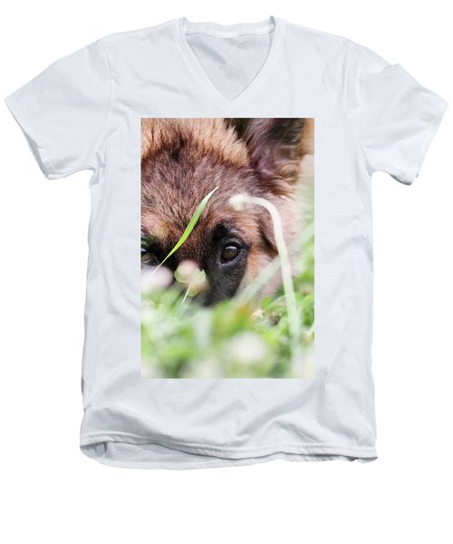Bashful Men's V-Neck T-Shirt