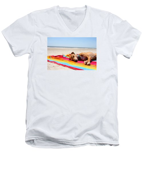 Beach Dreams Are Made Of These Men's V-Neck T-Shirt