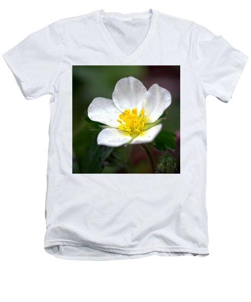 Beach Flower Men's V-Neck T-Shirt
