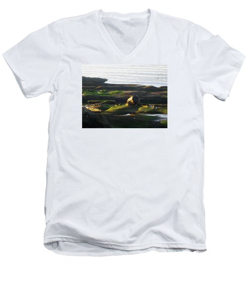 Beachcomber's Gold Men's V-Neck T-Shirt by Anne Havard