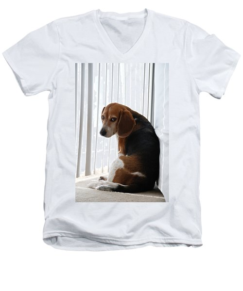 Beagle Attitude Men's V-Neck T-Shirt