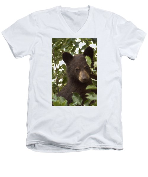 Bear Cub In Apple Tree7 Men's V-Neck T-Shirt by Loni Collins
