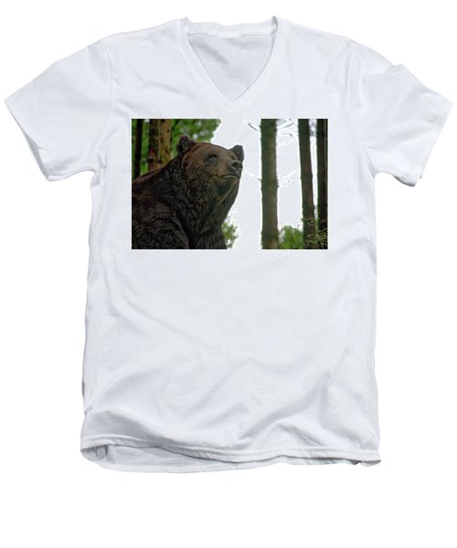 Bear Men's V-Neck T-Shirt