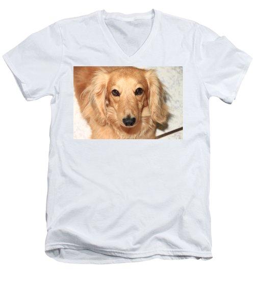 Beau Men's V-Neck T-Shirt