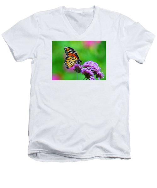 Beautiful Monarch Men's V-Neck T-Shirt