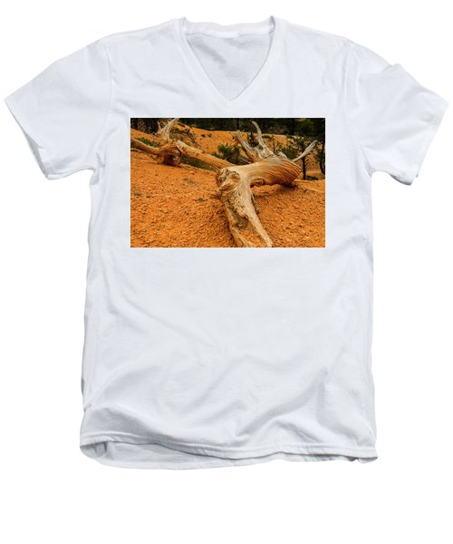 Beautiful Snag Men's V-Neck T-Shirt