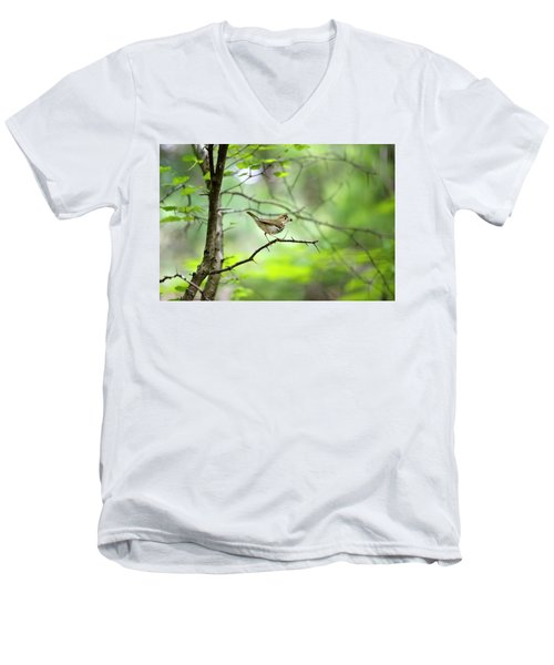 Beauty Of The Spring Forest Men's V-Neck T-Shirt