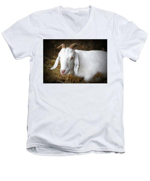 Bedded Down Men's V-Neck T-Shirt by Marion Johnson