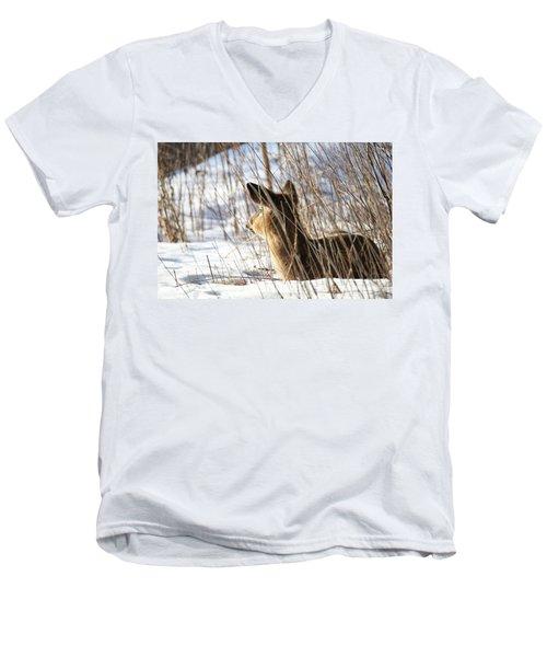 Bedded Fawn 2 Men's V-Neck T-Shirt by Brook Burling