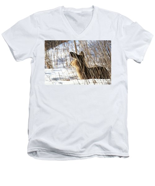 Bedded Fawn 2 Men's V-Neck T-Shirt