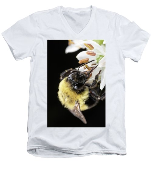 Bee Macro 1 Men's V-Neck T-Shirt
