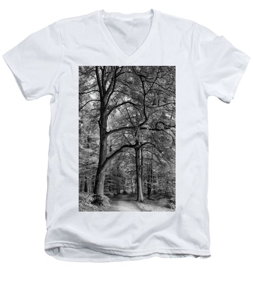 Beech Forest - 365-222 Men's V-Neck T-Shirt by Inge Riis McDonald