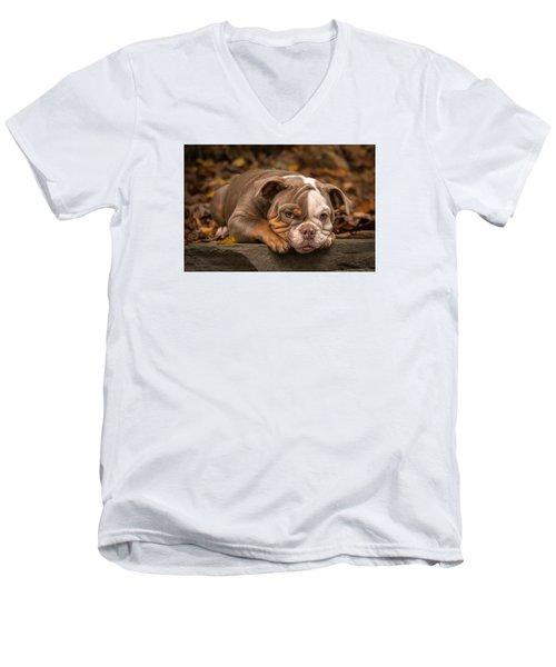 Bella 47 Men's V-Neck T-Shirt