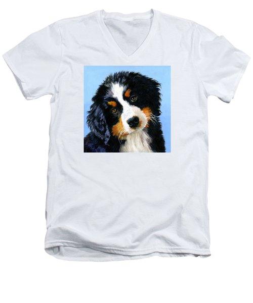 Bernese Mountain Puppy Men's V-Neck T-Shirt