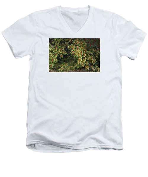 Men's V-Neck T-Shirt featuring the photograph Berry Spread by Deborah  Crew-Johnson