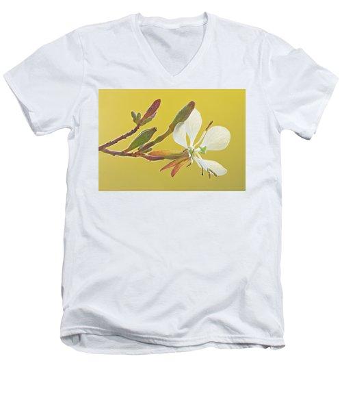 Biennial Gaura Men's V-Neck T-Shirt