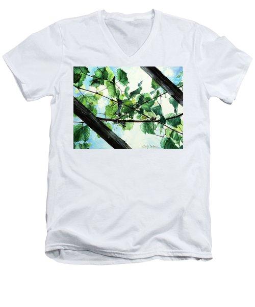Biltmore Grapevines Overhead Men's V-Neck T-Shirt