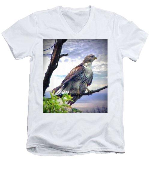Bird Of Prey Men's V-Neck T-Shirt
