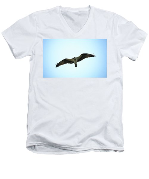Bird Of Prey Men's V-Neck T-Shirt