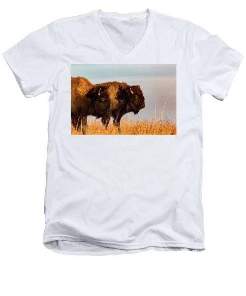 Bison Pair Men's V-Neck T-Shirt