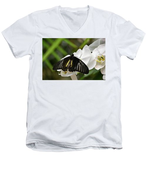 Black Butterfly Men's V-Neck T-Shirt