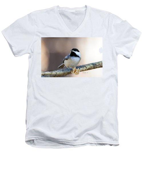 Black-capped Chickadee Men's V-Neck T-Shirt by Diane Giurco